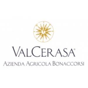 Valcerasa | Lucia Scuderi - Illustratrice, autrice, pittrice