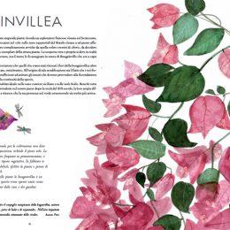 Giardino delle Meraviglie | Lucia Scuderi - Illustratrice, autrice, pittrice