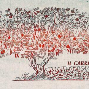 Tessuti del Sole | Lucia Scuderi - Illustratrice, autrice, pittrice