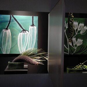 Botanica | Lucia Scuderi - Illustratrice, autrice, pittrice