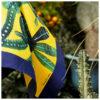 Foluard Euphorbia Oro | Lucia Scuderi
